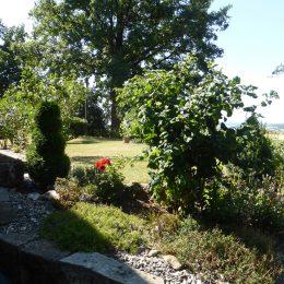 P1010170-260x260 Herzlich willkommen in unserer Ferienwohnung in Kulmbach